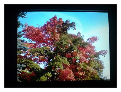 Kodak EasyShare SV811