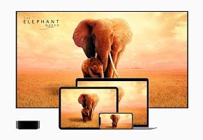 הודלף: אפל מתכננת להשיק בקרוב iPod Touch ו-Apple TV מעודכנים