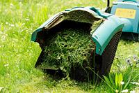 """""""מרבית מכסחות הדשא מצוידות בשק או במיכל איסוף שקולט את הדשא הקצוץ"""""""