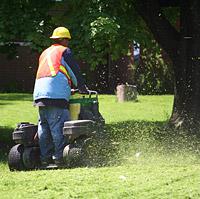 """""""מכסחות בעלות מערכת פליטה צדית יצאימו למכסחים את הדשא בתדירות גבוהה ואינם מוטרדים מנוכחות הגזם"""""""